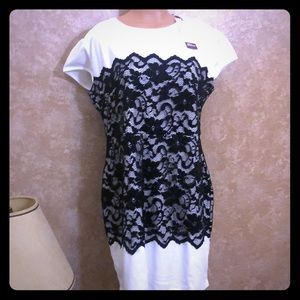 NWT Black lace on white fit and flare ss dress